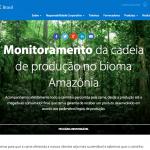 Website-Walmart-Sustentabilidade